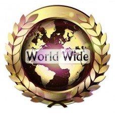 سرویس World Wide -  آیفون 6 , 6s و پلاس
